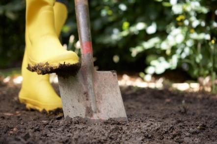 Копати чи не копати?