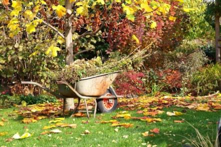 Осінній сад – роботи непочатий край