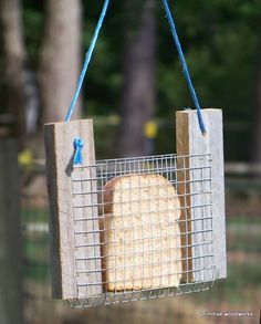 Щоб сильніші птахи не забирали їжу у малих.