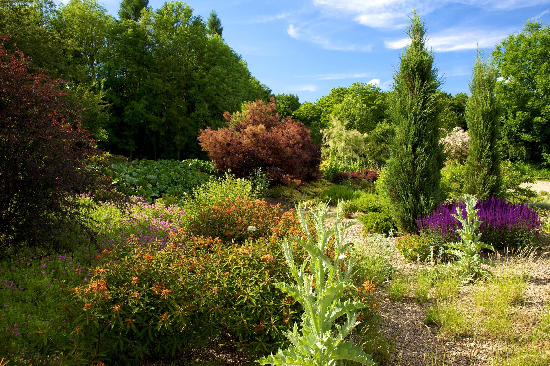 Яким би «лінивим» не був ваш сад, вам все-одно доведеться його контролювати