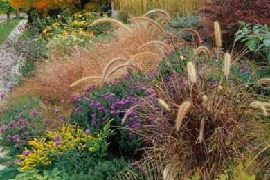 Нададуть будь-якому саду витонченості і легкості