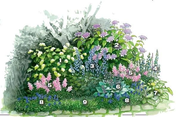 квітник зображення 12