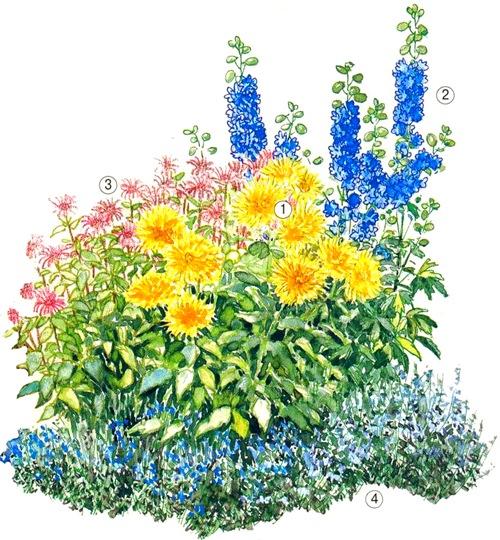 квітник зображення 13