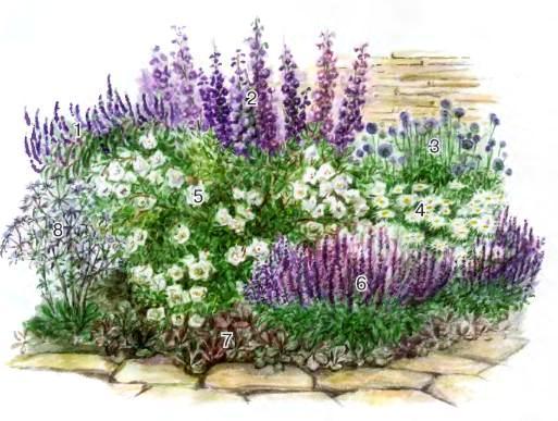 квітник зображення 18