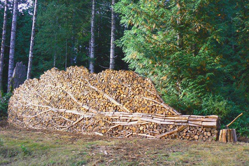дрова картинка 4