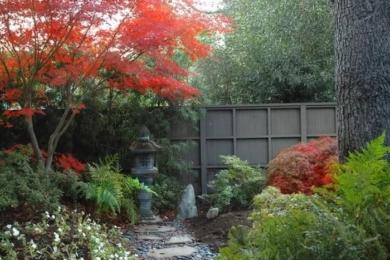 Японський сад зображення 18