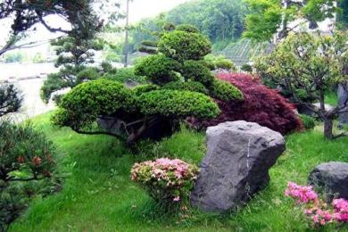 Японський сад зображення 24
