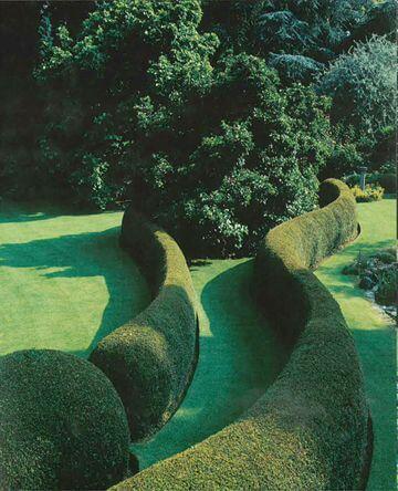 ідеї для саду картинка 29