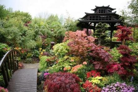 Ландшафтний дизайн для новачків – куточок Японії в саду
