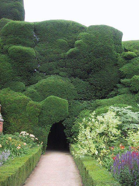 ідеї для саду картинка 32