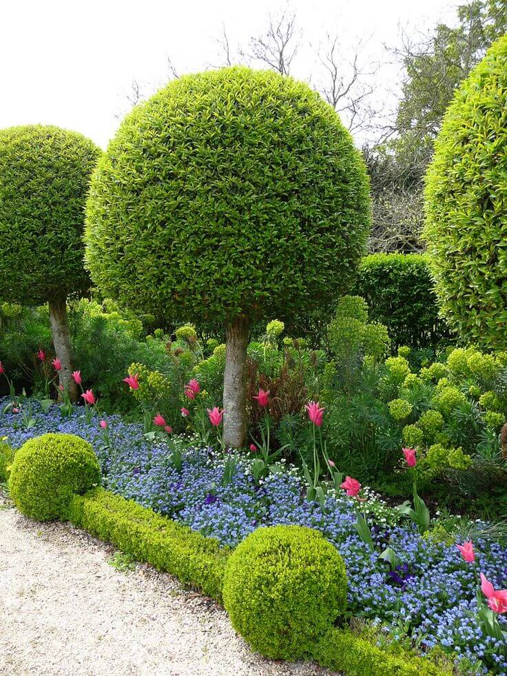 ідеї для саду картинка 4