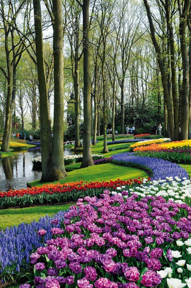 ідеї для саду картинка 59