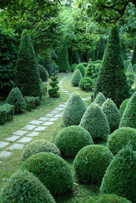 ідеї для саду картинка 6