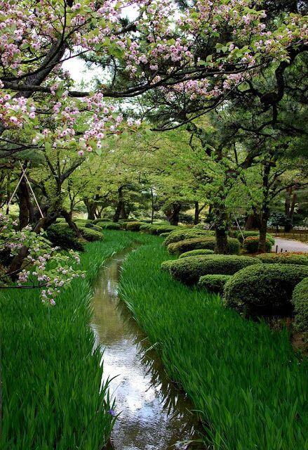 ідеї для саду картинка 71
