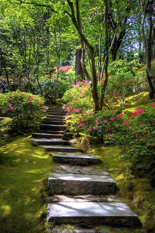 ідеї для саду картинка 72