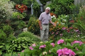 Про «священний» газон англійських пенсіонерів