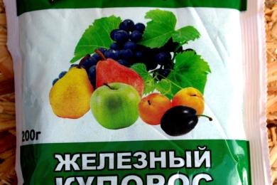 osinnye-vikorinyuyuche-obpriskuvannya-7-150x150-8970013