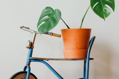 Не спішіть викидати старий дитячий велосипед чи скейт