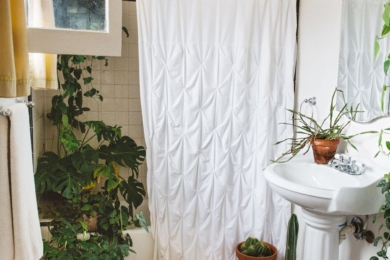Завдяки рослинам ванна кімната може стати справжнім оазисом!