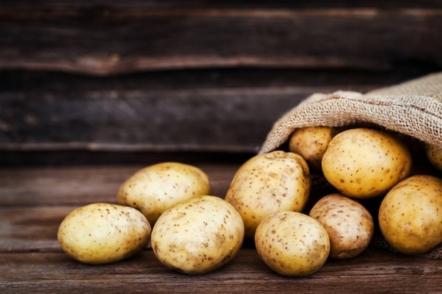 7 способів вирощування картоплі, які збільшать ваш урожай