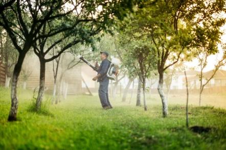 4 обов'язкових весняних обробки саду від хвороб та шкідників