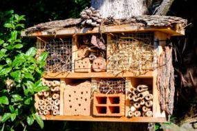 Будиночок для корисних комах — екологічний метод боротьби з шкідниками