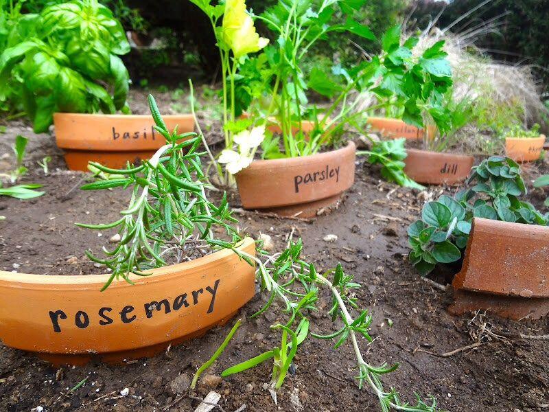 Маркери для рослин своїми руками — 10 простих ідей