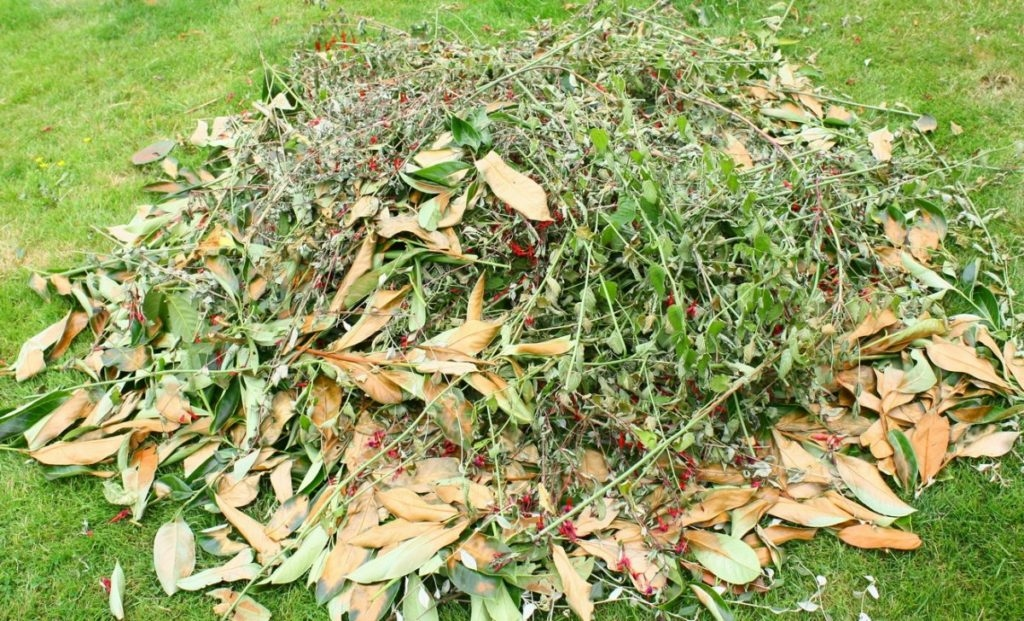 shvidkij-kompost-04-1024x621-4724162