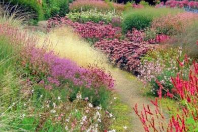 Сад в природному стилі