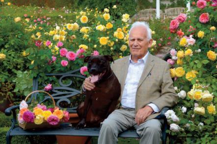 Епоха англійських троянд Девіда Остіна, або Історія одного селекціонера