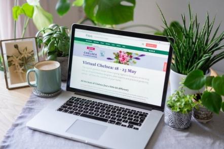 Квіткове шоу Челсі-2020 — знайомство з переможцями