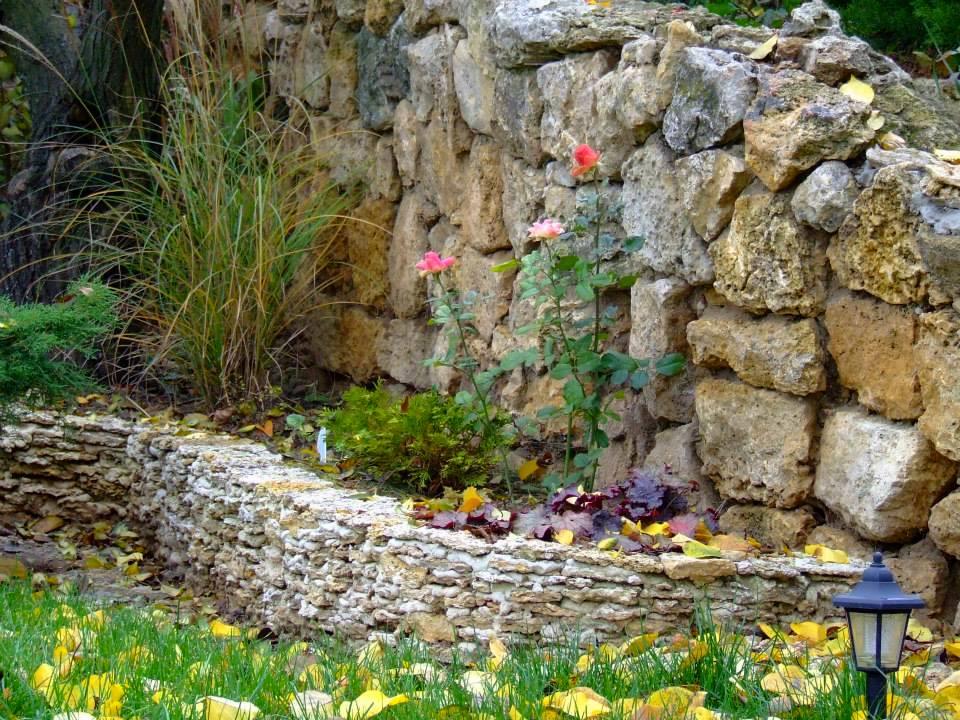 «Наш куточок Криму», - так тепло відзиваються про це місце господарі саду