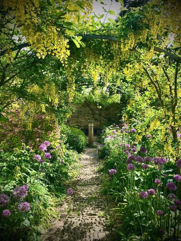 Знакова алея з бобовника (Laburnum Walk), посаджена попереднею власницею Розмарі Вері, відома світу з 1980. Її любить переважна більшість відвідувачів прекрасного саду Барнслі Хаус, фото алеї є найбільш впізнаваними з цього місця