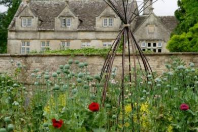 Справжній декоративний кухонний сад включає квіти, дерева та чагарники, а також трави та овочі