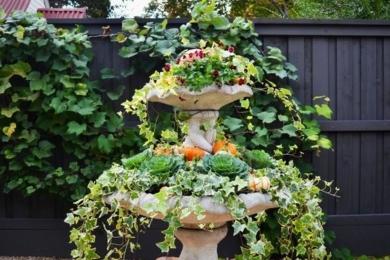 Осінній декор подвір'я