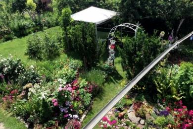 З даху вода стікає в жолоб, який пролягає вгорі через все подвір'я на город і потрапляє в бочки