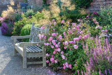 Створютей ваш мікс в залежності від висоти рослин, посадивши більш високі кущові троянди та рослини-супутники до задньої частини квітника. Попереду розмістіть нижчі, бажано запашні троянди та супутні рослини