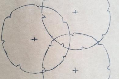 На схемі зображено три троянди, посаджені разом як великий кущ (розверніть фото)