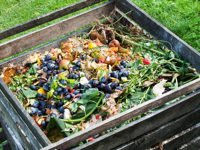 Теоретично, використовувати у компостуванні можна будь-який ягідний та фруктовий «опад» — падалицю з ягідних кущів та всіх видів фруктових дерев