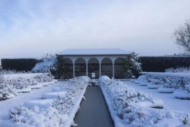 Одна з найулюбленіших фотографій трояндових садів у снігу — «Довгий сад», центральний сад ДО Роузес