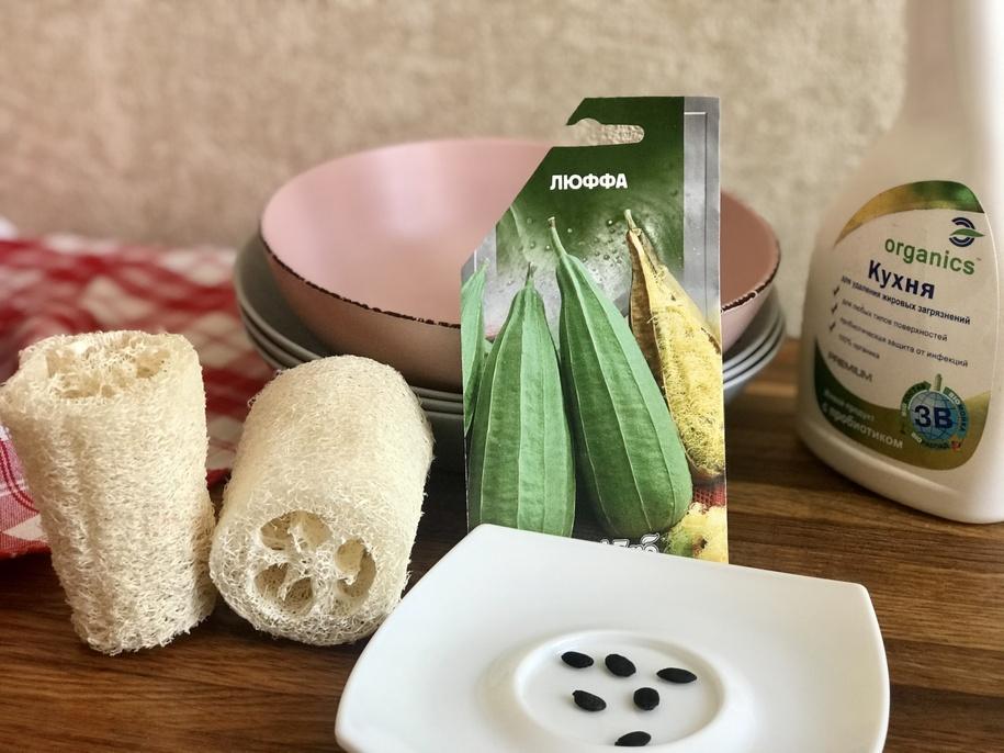 Люфа — від насіння до мочалки