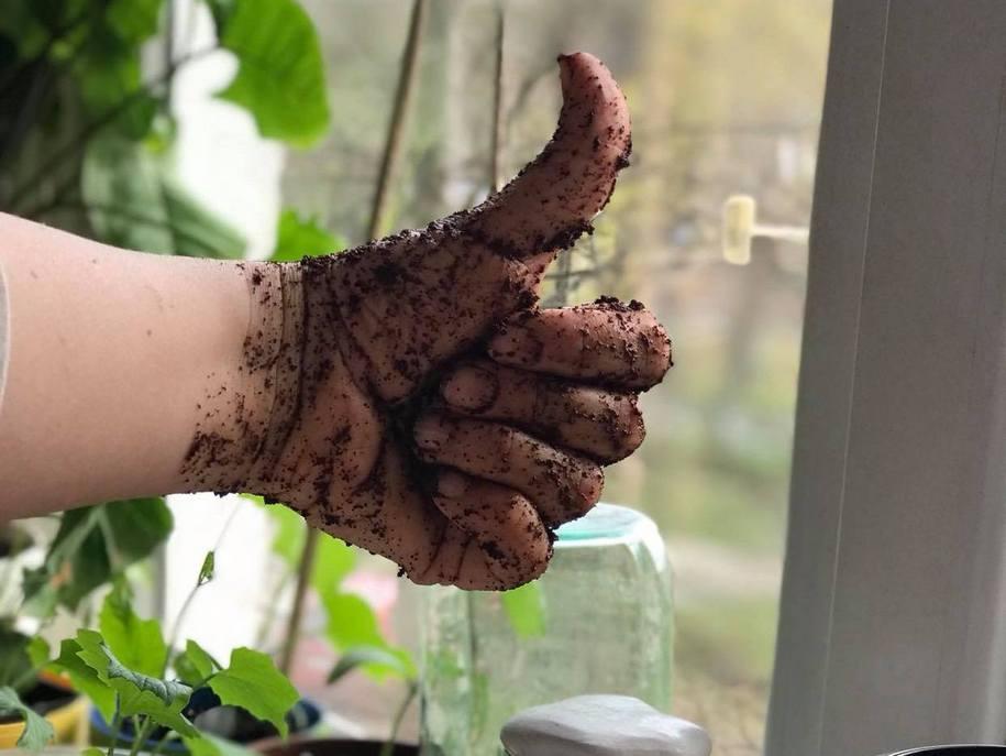 Кавовий скраб для рук - моментально покращить стан шкіри