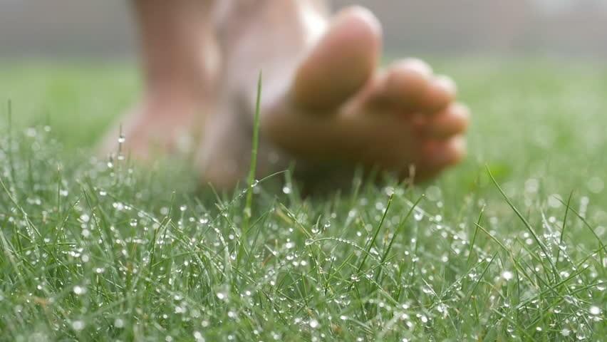 Прогулянки по ранішній росі приносять надзвичайні результати для ніжності шкіри стоп