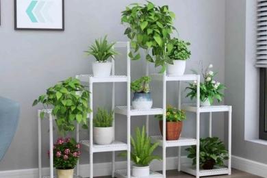 Багатоярусні стенди для кімнатних рослин