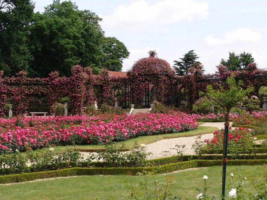 «Сад задоволення та краси», як його називали і називають, розарій Валь-де-Марн став всесвітньо відомим громадським садом