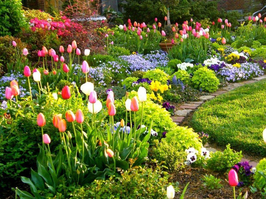 """Весняний квітник буде вдалим лише при використанні """"маяків"""" (традиційних весняних квітів) разом з правильними партнерами"""