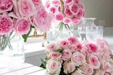 Троянда «Міренда» — деякі квіти вже у повному розквіті, інші готові здійснити своє перетворення — це все одна троянда