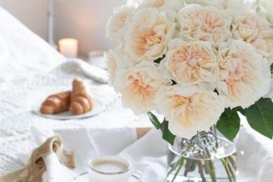 Сніданок у ліжко, кава, спокусливий аромат гарячих круасанів та букет ароматних троянд Девіда Остіна… і малееесенька обручка на підносі створить незабутній День закоханих або інший день, але точно незабутній!