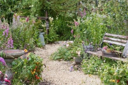 Квіткове шоу Челсі-2021 — огляд віртуальної виставки