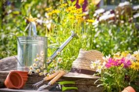 Посівний календар на липень 2021 городника і садівника